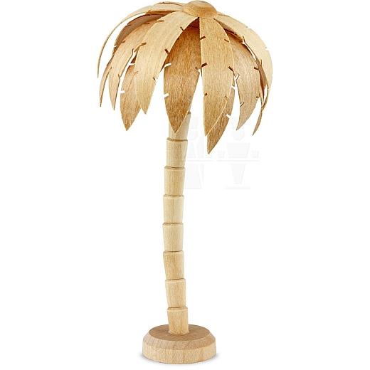 Palme klein natur