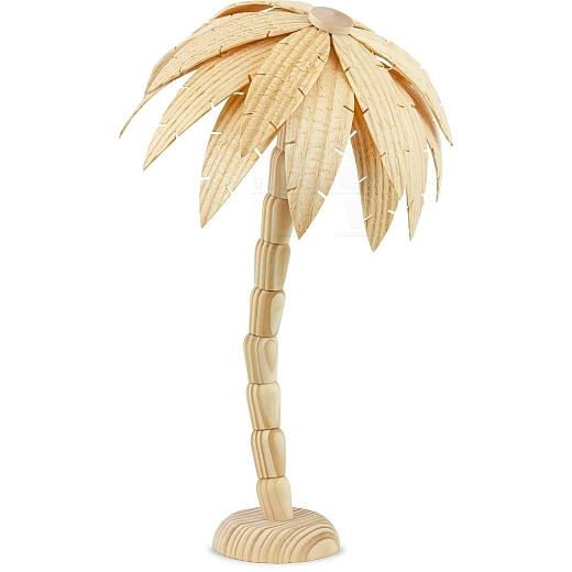 Palme mittel natur