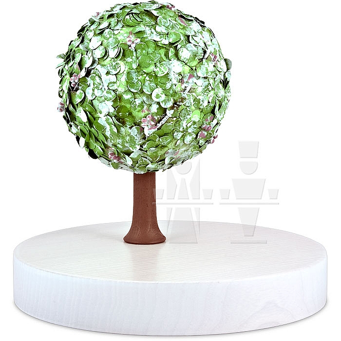 flade apfelbaum im fr hling auerbacher erzgebirgs haus. Black Bedroom Furniture Sets. Home Design Ideas
