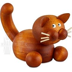 Katze Charlie auf der Lauer