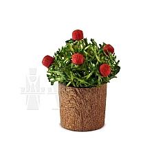 Blumentopf mit Knospen als Miniatur von Günter Reichel